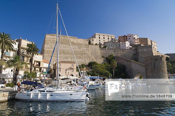 Hafen und Zitadelle von Calvi  Balagne  Insel Korsika  Frankreich  Europa