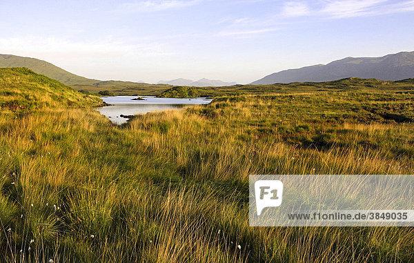 Seenlandschaft mit Maumturk-Bergen bei Sonnenaufgang  Connemara  Irland  Europa