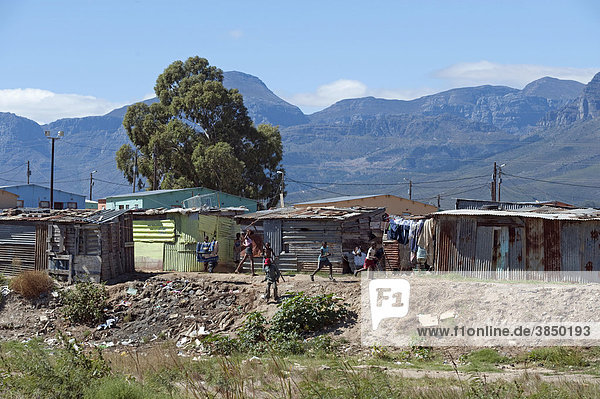 Makeshift huts in a township outside of Wellington  Western Cape  South Africa  Africa