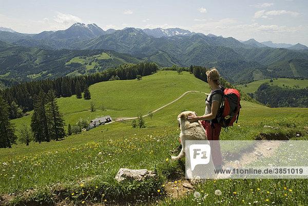Junge Frau mit Hund beim Wandern mit Blick auf Gschwendtalm im Nationalpark Kalkalpen  Oberösterreich  Österreich  Europa