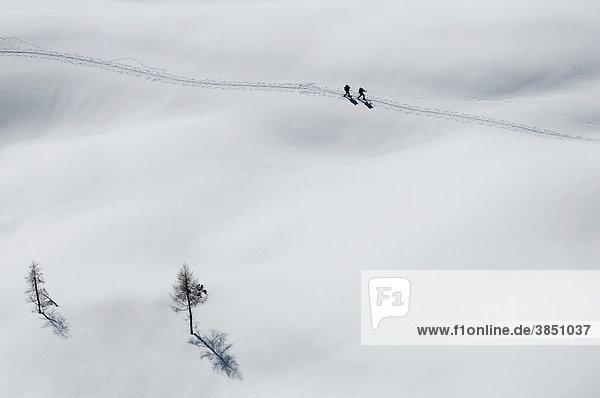 Cross country skiers  Woerschach  Styria  Austria  Europe