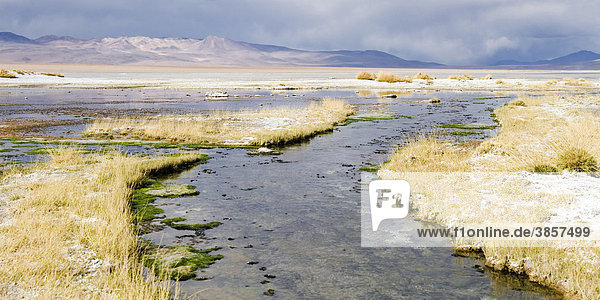 Laguna Salada  auch Laguna Polski  Altiplano Salzsee  Potosi  Bolivien  Südamerika