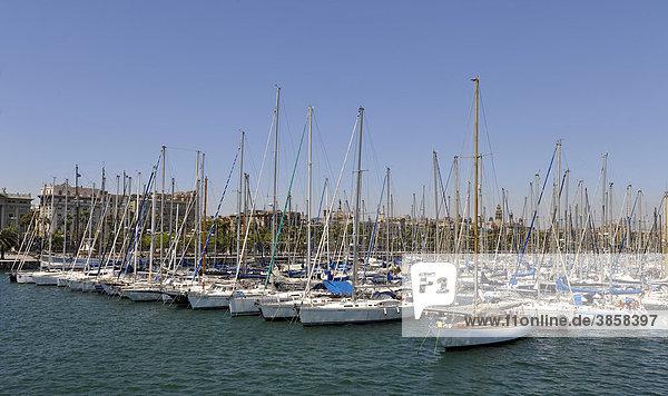 Segelyachten im Hafen Port Vell  Barcelona  Katalonien  Spanien  Europa