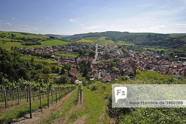 Ausblick von einer Anhöhe auf Odernheim am Zusammenfluss von Glan und Nahe  Odernheim  Rheinland-Pfalz  Deutschland  Europa