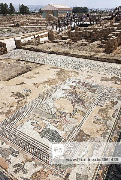 Bodenmosaik  römische Siedlung  Ausgrabungsstätte  Pafos  auch Paphos  Südzypern  griechisch  Insel Zypern  Südeuropa