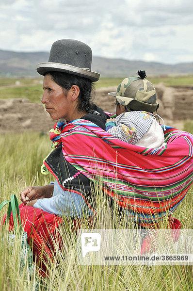 Abstammung  am  Amerika  amerikanisch  amerikanische  amerikanischer  amerikanisches  Amerikas  außen  Außenaufnahme  aussen  Aussenaufnahme  Aussenaufnahmen  Aymara  Aymara-Indianer  Baby  Baby-Tragetücher  Baby-Tragetuch  Baby-Tragetuecher  Babys  bei  Bekleidung  bolivianisch  bolivianische  bolivianischer  bolivianisches  Bolivien  Bräuche  Braeuche  Brauch  Brauchtümer  Brauchtuemer  Brauchtum  bunt  bunte  bunter  buntes  der  draußen  draussen  ethnisch  ethnische  ethnischer  ethnisches  Ethnologie  ethnologisch  ethnologische  ethnologischer  ethnologisches  farbig  farbige  farbiger  farbiges  Folklore  Frau  Frauen  Gräser  Graeser  Gras  Hüte  Herkunft  hohe  hohem  hoher  hohes  Huete  Hut  in  Indianer  indianisch  indianische  indianischer  indianisches  indigene  indigenes  Indio  Indios  inmitten  jung  junge  junger  junges  Kid  Kids  Kind  Kinder  Kleidung  Kleidungsstil  Kleidungsstile  klein  kleine  kleiner  kleines  Kleinkind  Kleinkinder  Kopfbedeckung  Kopfbedeckungen  Kultur  Kulturanthropologie  kulturell  kulturelle  kultureller  kulturelles  Kulturen  La  Lateinamerika  Leute  Mütter  Mama  Mamas  Mensch  Menschen  mit  Muetter  Mutter  Paz  Person  Personen  Porträt  Porträts  Portraet  Portraets  Portrait  Portraits  Rücken  Ruecken  Südamerika  südamerikanisch  südamerikanische  südamerikanischer  südamerikanisches  schwarz  schwarze  schwarzer  schwarzes  Seite  Seitenansicht  seitlich  Sozialanthropologie  stehen  stehend  stehende  stehender  stehendes  steht  Suedamerika  suedamerikanisch  suedamerikanische  suedamerikanischer  suedamerikanisches  Tag  Tage  Tageslicht  tagsüber  tagsueber  Tiwanaku  trägt  Tracht  Trachten  Tradition  traditionell  traditionelle  traditioneller  traditionelles  Traditionen  traegt  tragen  tragend  tragende  tragender  tragendes  Tragetücher  Tragetuch  Tragetuecher  Ureinwohner  Völker  Völkerkunde  Veranstaltung  Veranstaltungen  Voelker  Voelkerkunde  Volk  wählen  waehlen  Wahl  Wahlen  weib