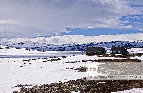 Einsame Häuser inmitten der Hardangervidda  Norwegen  Skandinavien  Europa
