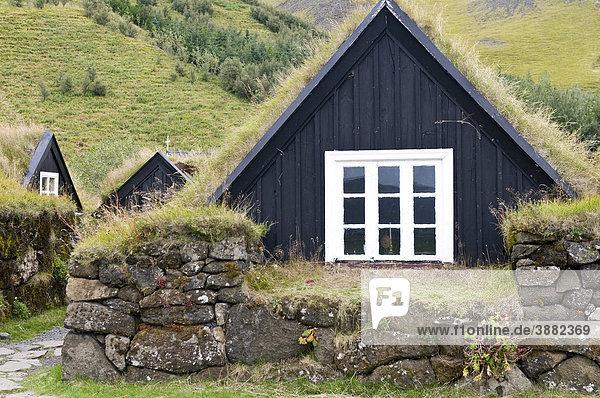 Historische Häuser mit Grasdach in Skogar  Island  Europa