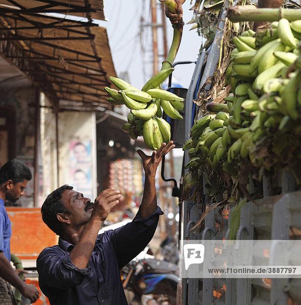 Lastwagen mit Bananen wird entladen  Alleppey  Alappuzha  Kerala  Südindien  Indien  Südasien  Asien