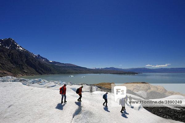 Gletschertrekking  Viedma-Gletscher  El Chalten  Patagonien  Anden  Argentinien  Südamerika