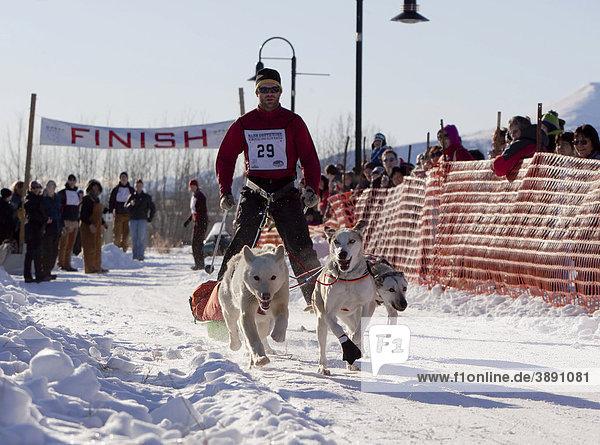 Mann beim Hundeschlittenrennen  Schlittenhunde ziehen Langläufer und kleinen Schlitten  Pulka  Hundesport  Alaskan Huskies Schlittenhunde  Beginn des Road Runner 100 Hundeschlittenrennen  Whitehorse  Yukon Territorium  Kanada