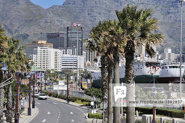 Schiffe im Trockendock  Hochhäuser vor dem Tafelberg  Foreshore  Kapstadt  Westkap  Südafrika  Afrika