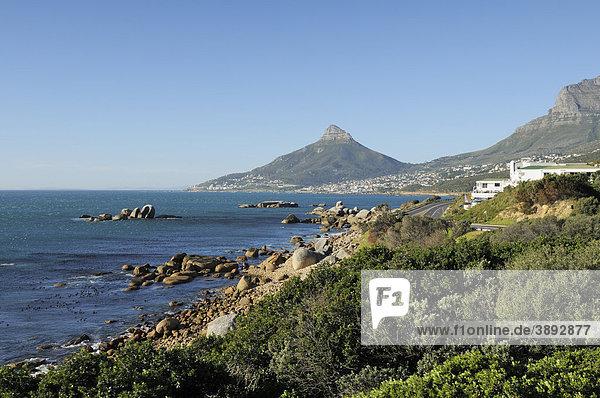Blick auf Lion's Head und Camps Bay  Kapstadt  Südafrika  Afrika