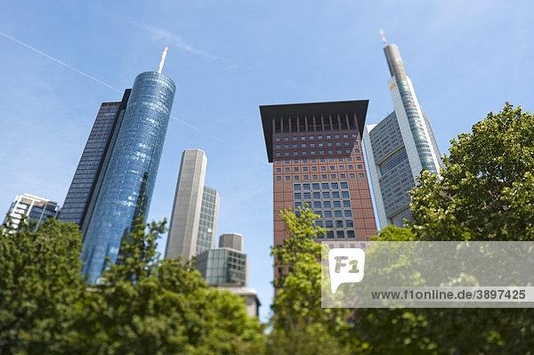 Main Tower und Japan Center hinter Bäumen  Frankfurt am Main  Deutschland