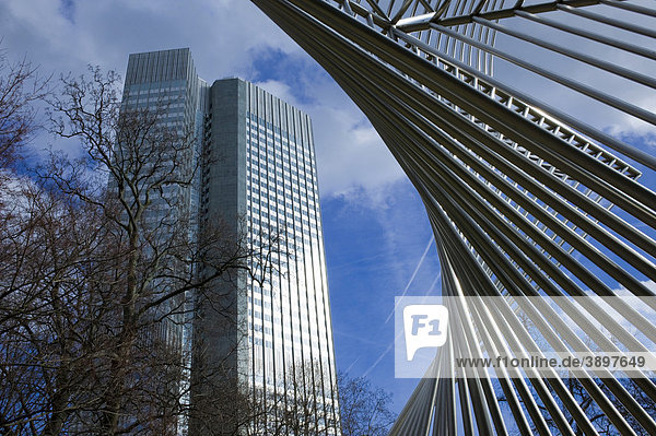 Europäische Zentralbank EZB  Eurotower ECB  Frankfurt am Main  Hessen  Deutschland  Europa