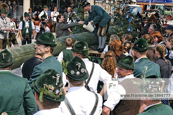 Der Bürgermeister von Prien  Jürgen Seifert  schüttelt Hände beim Maibaumfest  Chiemgau  Oberbayern  Deutschland  Europa