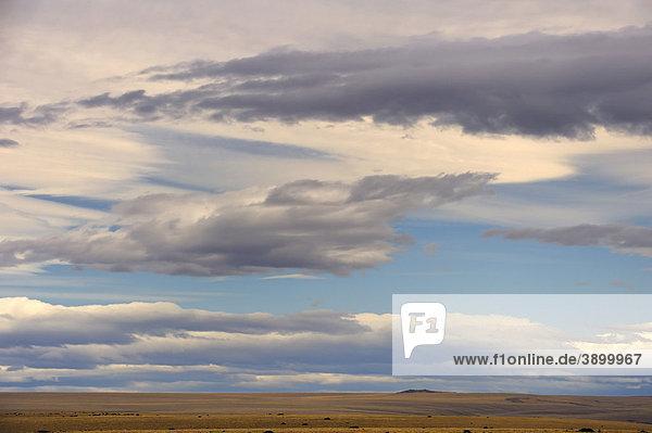 Dramatischer Wolkenhimmel über Pampa  Patagonien  Chile  Südamerika
