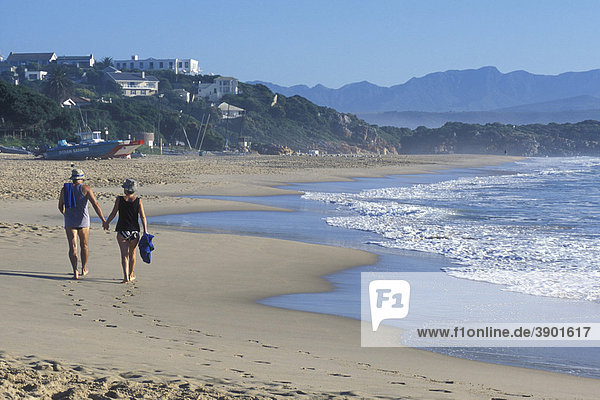 Older couple walking on the beach in Plettenberg Bay  Garden Route  Western Cape  South Africa  Africa