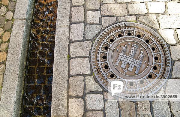 Kanaldeckel mit Freiburger Stadtwappen und Bächle  Freiburg  Baden-Württemberg  Deutschland  Europa