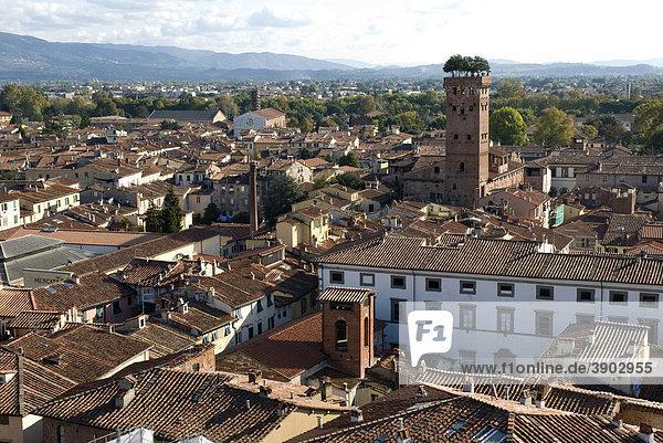 Stadtansicht mit Torre Guinigi  Aussicht von Torre Civica Delle Ore  Lucca  Toskana  Italien  Europa