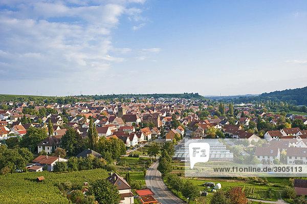 Blick vom Käsberg  Mundelsheim  Neckartal  Baden-Württemberg  Deutschland  Europa