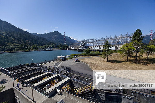 Power plant at the Bonneville Dam  Bradford Island  Orgeon  USA