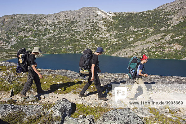 Gruppe junger Wanderer beim Wandern mit Rucksack  historischer Chilkoot Pass  Chilkoot Trail in der Nähe des Happy Camp  Long Lake dahinter  alpine Tundra  Yukon Territorium  British Columbia  BC  Kanada