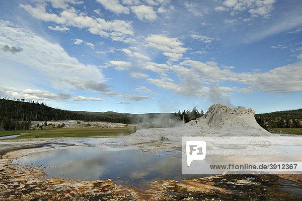 Castle Geysir im Geysir-Becken des Yellowstone Nationalparks  Wyoming  USA