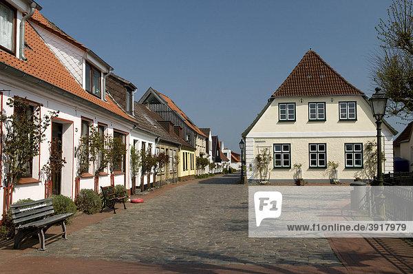 Fischersiedlung Holm in Schleswig  Schleswig-Holstein  Deutschland  Europa