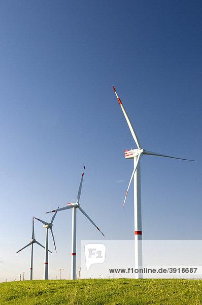 Windräder an der Elbe  Niedersachsen  Deutschland  Europa