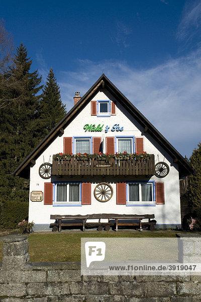 Pension Pension Wald und See  Titisee  Schwarzwald  Baden-Württemberg  Deutschland  Europa