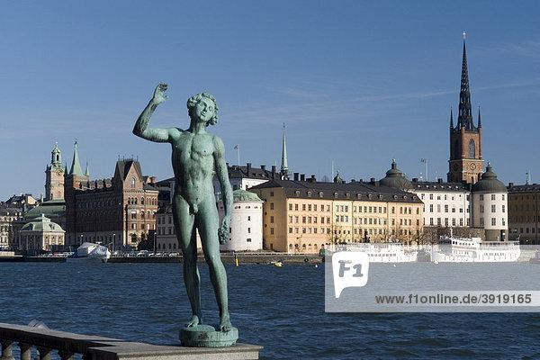 Statue und Altstadt Riddarholmen  Stockholm  Schweden  Skandinavien  Europa