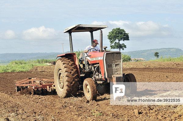 Feldarbeit  Bearbeitung eines Ackers mit dem Traktor  Siedlung der brasilianischen Landlosenbewegung Movimento dos Trabalhadores Rurais sem Terra  MST  Assentamento 14 de Agosto  Campo Verde  Mato Grosso  Brasilien  Südamerika