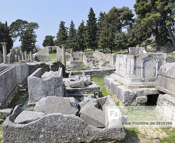 Frühchristliche Basilika in Salona bei Split  Kroatien  Europa