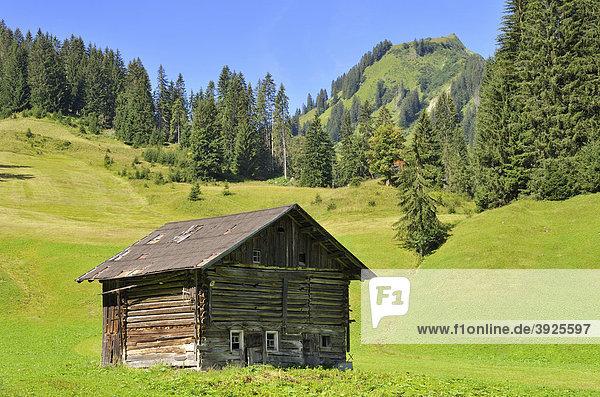 Hütte im Bärgunttal  Bärgundtal  Kleinwalsertal  Vorarlberg  Allgäuer Alpen  Österreich  Europa