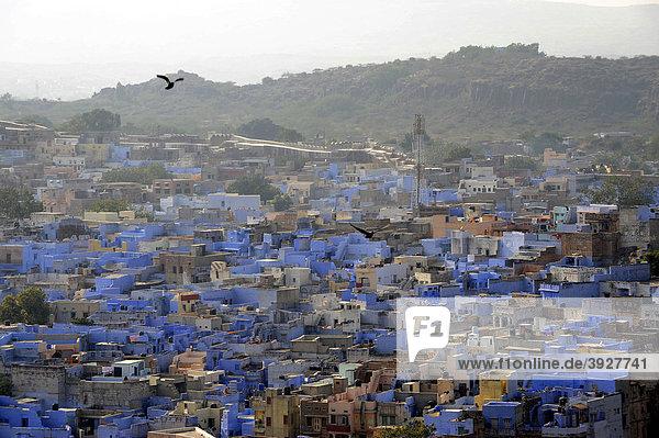 Blick vom Mehrangarh Fort auf Jodhpur  Die Blaue Stadt  Rajasthan  Nordindien  Indien  Südasien  Asien