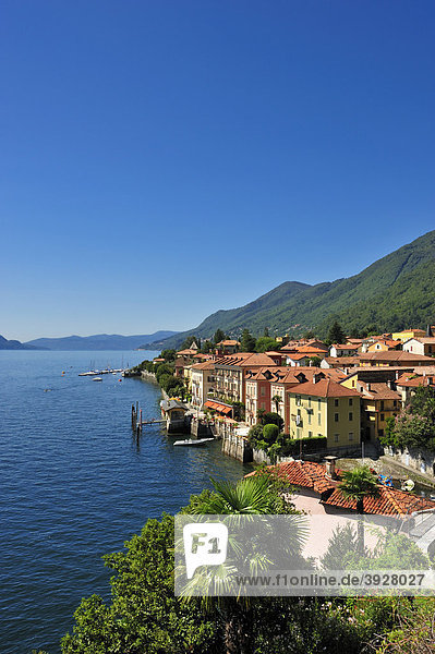 Ortsbild mit Lago Maggiore  Cannero Riviera  Piemont  Italien  Europa