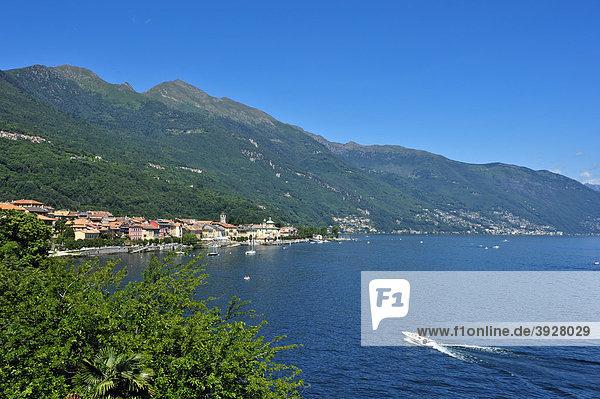Stadtansicht mit Lago Maggiore  Cannobio  Piemont  Italien  Europa