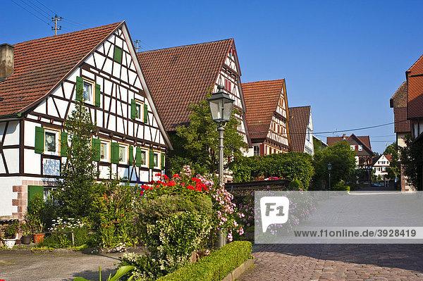 Ortsbild Im Städtle  Bad Teinach Zavelstein  Schwarzwald  Baden-Württemberg  Deutschland  Europa