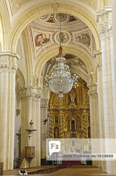 Kathedrale  Baeza  Jaen Provinz  Andalusien  Spanien  Europa