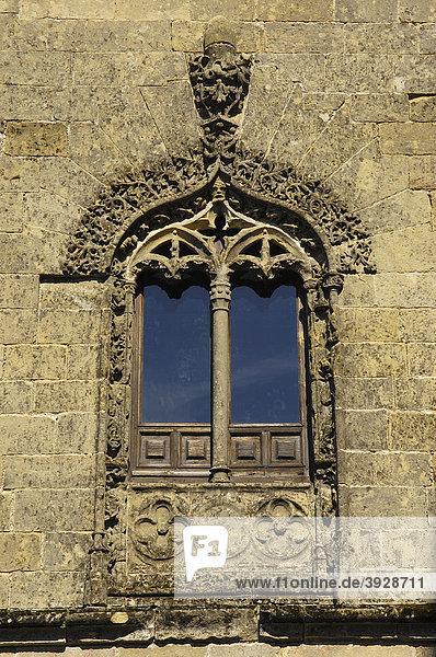 Fassadendetail der Kathedrale  16. Jahrhundert  Santa Maria Platz  Baeza  Jaen Provinz  Andalusien  Spanien  Europa