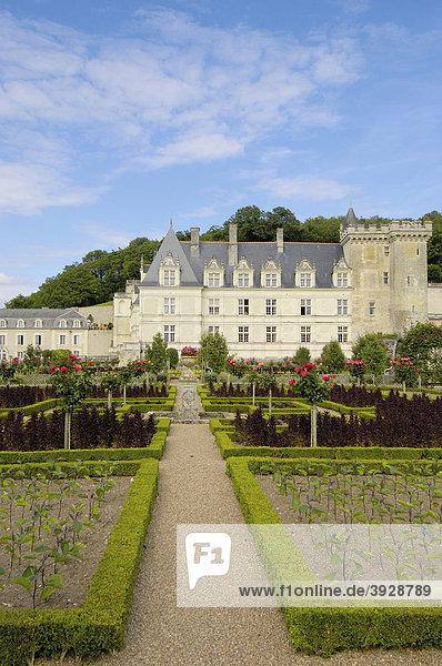 Schloss und Gärten von Villandry  Ch'teau de Villandry  Indre-et-Loire  Touraine  Loire Tal  Frankreich  Europa