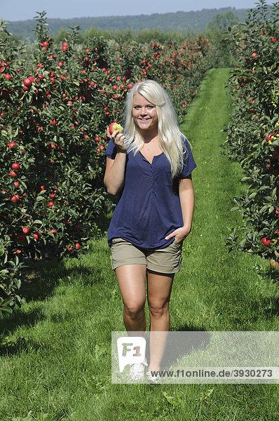 Blond woman walking in an apple orchard