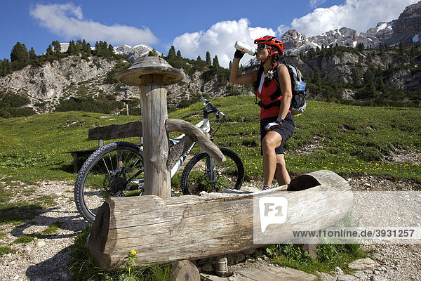 Mountain bike rider drinking from a water fountain at the Fodara hut in the Fodara Vedla-Mulde  Fanes-Sennes-Prags Nature Park  Trentino  Alto Adige  Italy  Europe