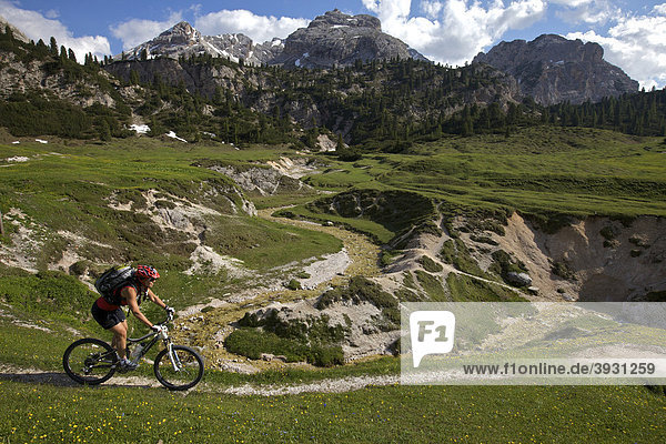 Mountain bike rider in the Fodara Vedla-Mulde  Fanes-Sennes-Prags Nature Park  Trentino  Alto Adige  Italy  Europe