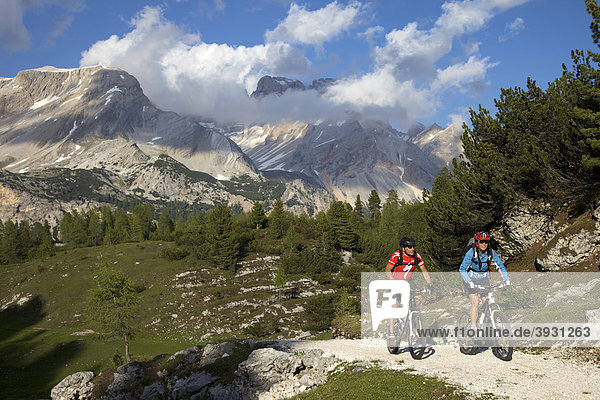 Mountain bike riders east of the Fodara Vedla basin  Parco naturale Fanes-Sennes-Braies  Veneto  South Tyrol  Italy  Europe