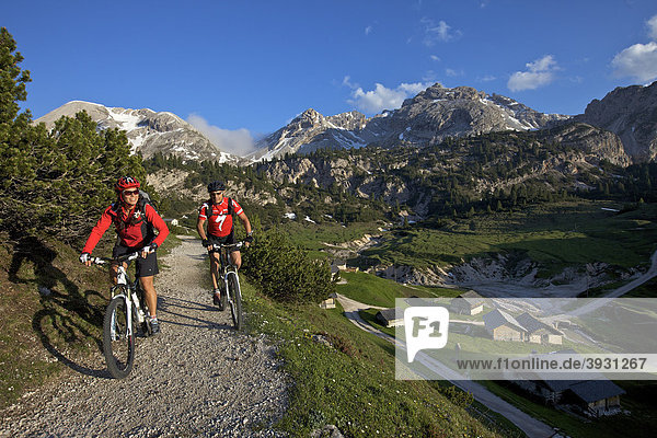 Mountain bike riders  Fodara Vedla basin  Parco naturale Fanes-Sennes-Braies  Veneto  South Tyrol  Italy  Europe