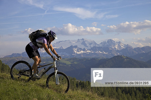 Mountain bike rider on single trail at Mt. Kreuzkofel  in the back Mt. Marmolada  Naturpark Fanes-Sennes-Prags  Trentino  South Tyrol  Italy  Europe