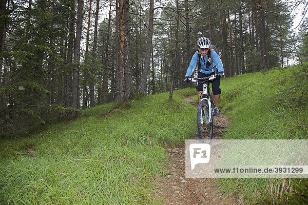 Mountain bike rider on single trail in the forest near San Vigilio  Naturpark Fanes-Sennes-Prags  Trentino  South Tyrol  Italy  Europe