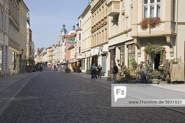 Collegienstraße  Lutherstadt Wittenberg  Saxon-Anhalt  Deutschland  Europa